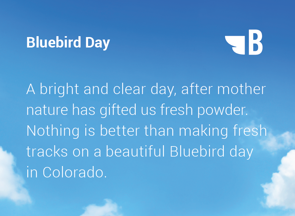 what-is-a-bluebird-day