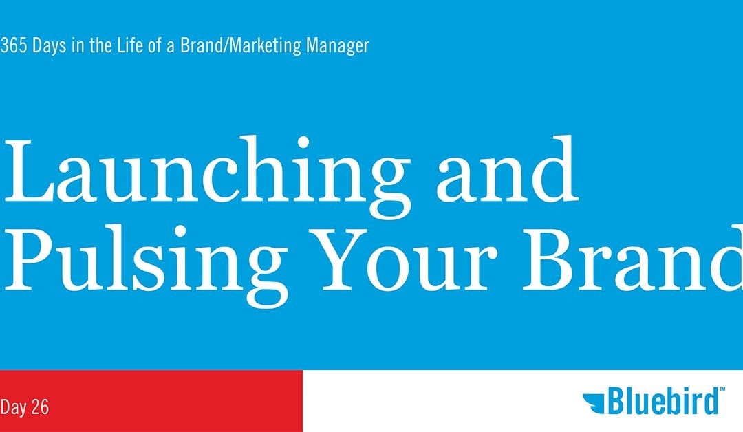 Launching and Pulsing Your Brand