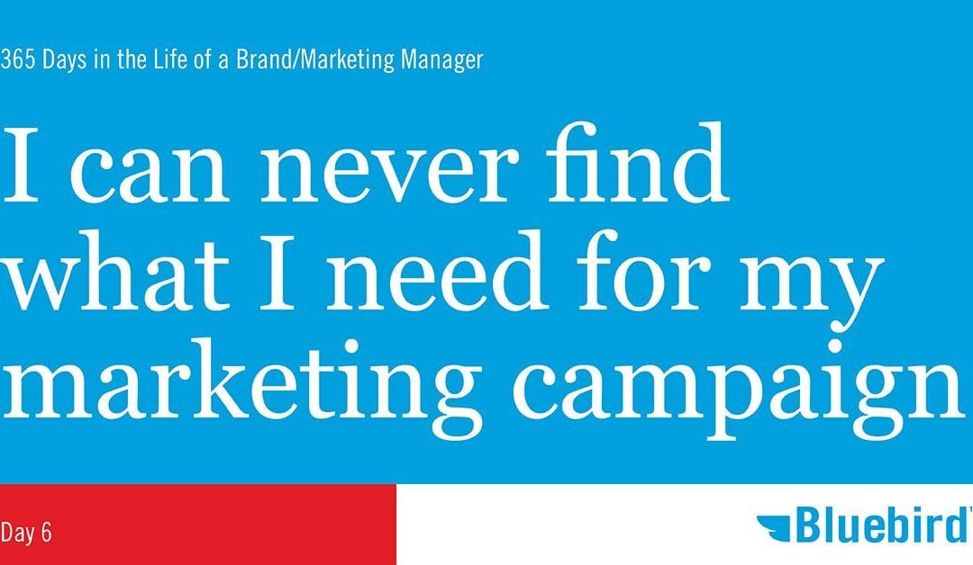 I can never find what I need for my marketing campaign
